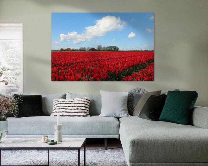 Sfeerimpressie: Tulpenveld in Noord-Holland van Pim van der Horst