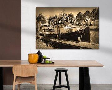 Vianen Utrecht Sepia Schmetterlingstage von Hendrik-Jan Kornelis