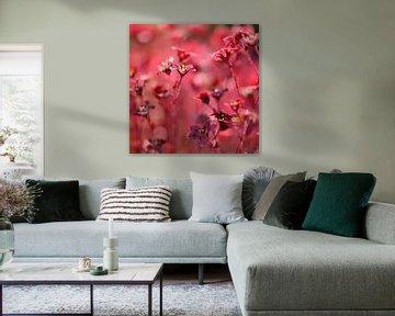 Blumen von Ronald Mallant