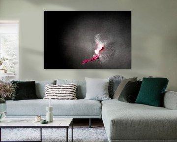 Capture à haute vitesse de parties de ballons roses et de gouttes d'eau qui s'envolent après un coup sur pixxelmixx