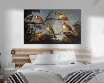 Vögel auf den Zweigen eines Baumes, Jan Van Kessel der Ältere