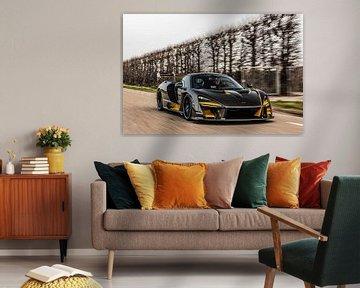 McLaren Senna van Bas Fransen