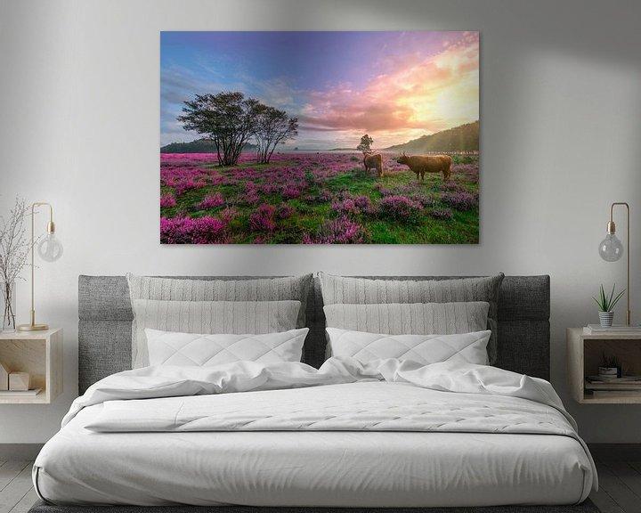Beispiel: Sonnenaufgang auf dem lila Heidekraut in Bussem von Rens Marskamp