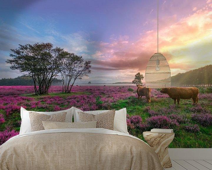 Beispiel fototapete: Sonnenaufgang auf dem lila Heidekraut in Bussem von Rens Marskamp