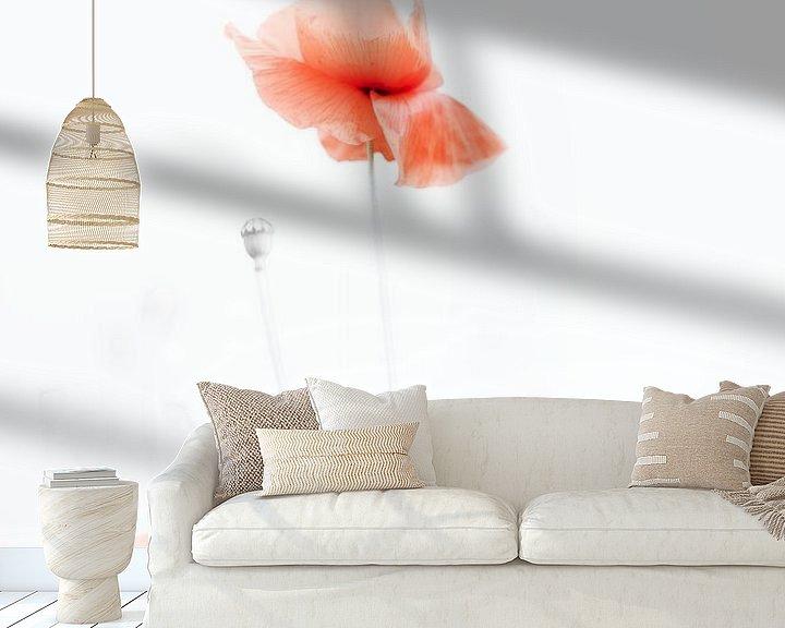Sfeerimpressie behang: Klaproos van Ingrid Van Damme fotografie