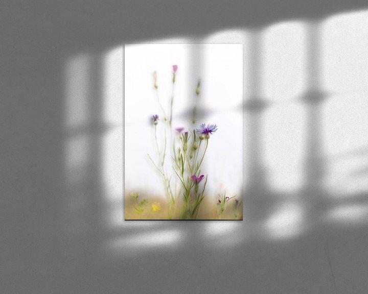 Sfeerimpressie: Korenbloem van Ingrid Van Damme fotografie