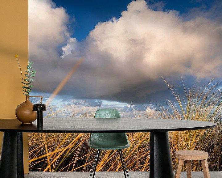 Sfeerimpressie behang: Kust landschap in de Nederlandse duinen van Fotografiecor .nl