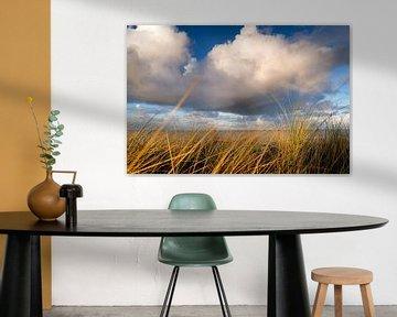 Kust landschap in de Nederlandse duinen van Fotografiecor .nl