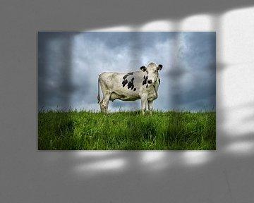 Die holländische Kuh von Mark de Weger