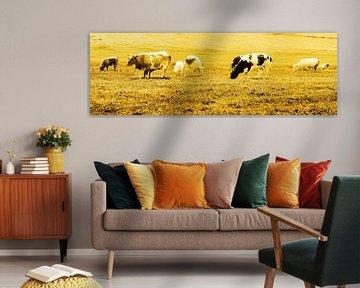 Kühe auf der Weide Lisse Niederlande Gold von Hendrik-Jan Kornelis
