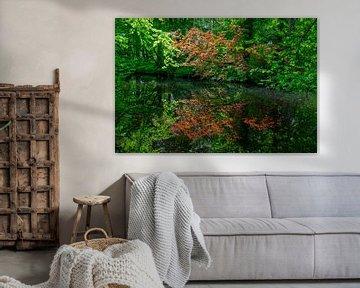 Buitenplaats Het Huys ten Donck: weerspiegeling in de bos vijver. van Rick Van der Poorten