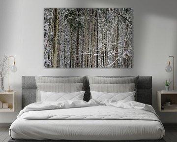 Bäume im Schnee von Huib Vintges