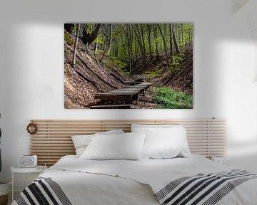 Houten loopbrug door het bos van het Siebengebergte van David Esser
