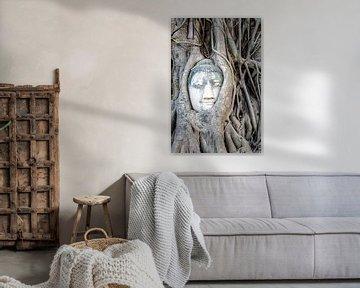 Boeddha in boom van Richard Guijt Photography