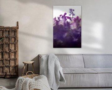 Lonely Hyacinth van Bob Daalder