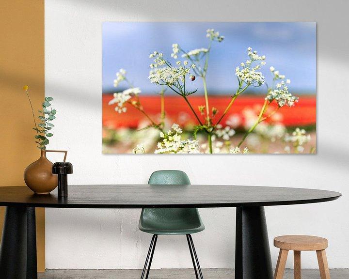 Sfeerimpressie: Rood wit en blauw in de natuur 1 van Anouschka Hendriks