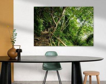 Dschungel in Ao Nang, Thailand von Kelly Baetsen