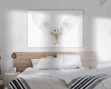 Kerkuil biddend als engel. van Larissa Rand