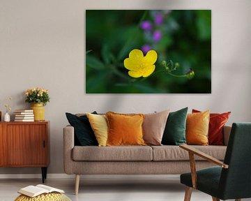 Frühlingsblume 8 von t.ART