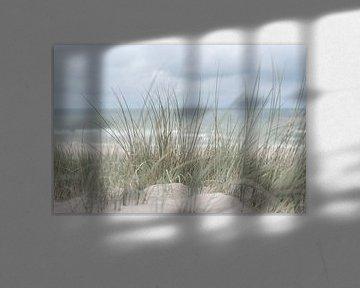 Holländische Dünen von DsDuppenPhotography