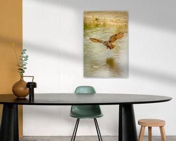 Een Oehoe, de roofvogel vliegt met uitgespreide vleugels  boven een meer. Mooie reflectie in het wat van Gea Veenstra