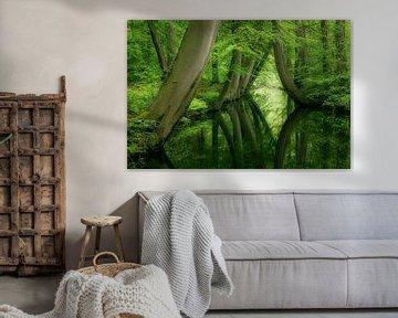 Kromme bomen Twickeler Vaart Delden van Peter Bolman