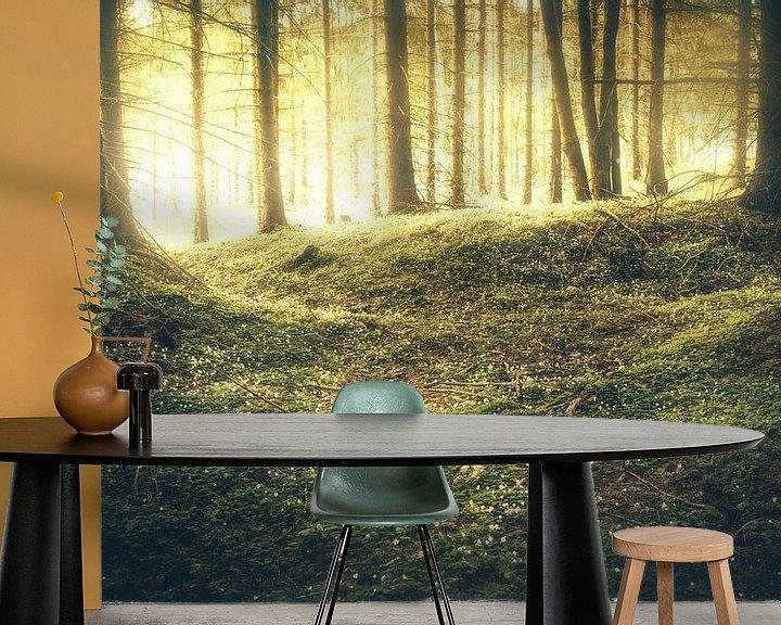 Beispiel fototapete: Goldiger Sonnenaufgang im Wald von Oliver Henze