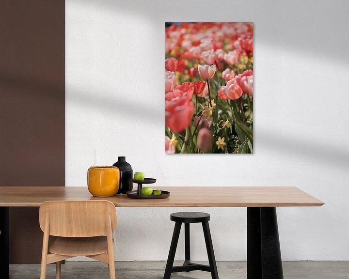 Sfeerimpressie: Roze Tulpen in voorjaarszon van Jonai