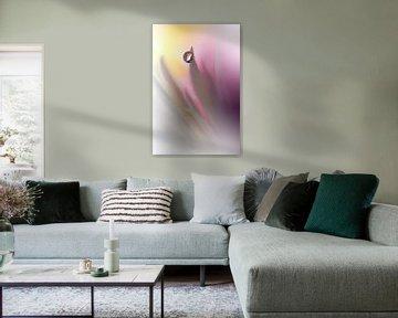 Abstract Illusion .., Juliana Nan van 1x