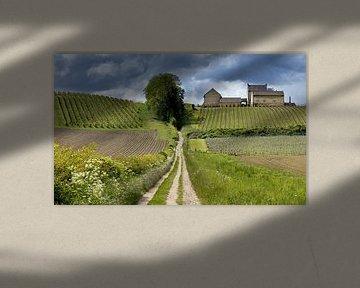 Toscaans Limburg, Nederland van Adelheid Smitt