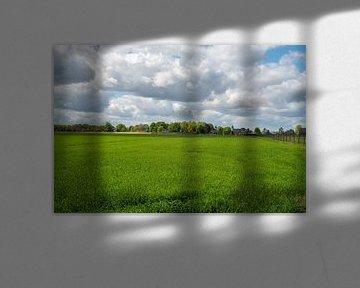 Grasige Landschaft von JM de Jong-Jansen