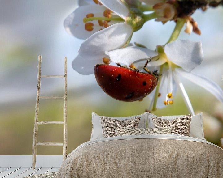 Sfeerimpressie behang: Lieveheersbeestje onder stuifmeel op bloesem van Jacqueline De Rooij Fotografie