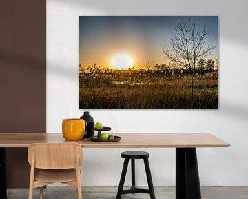Ondergaande zon bij Riels Laag van Jacqueline De Rooij Fotografie