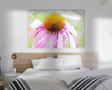 Echinacea abstrakt von Roswitha Lorz