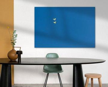 Zwei Schmetterlinge in der Luft von Olaf Oudendijk