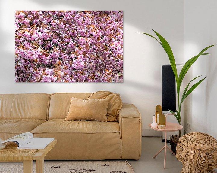 Impression: Fleur de cerisier sur Frank Herrmann