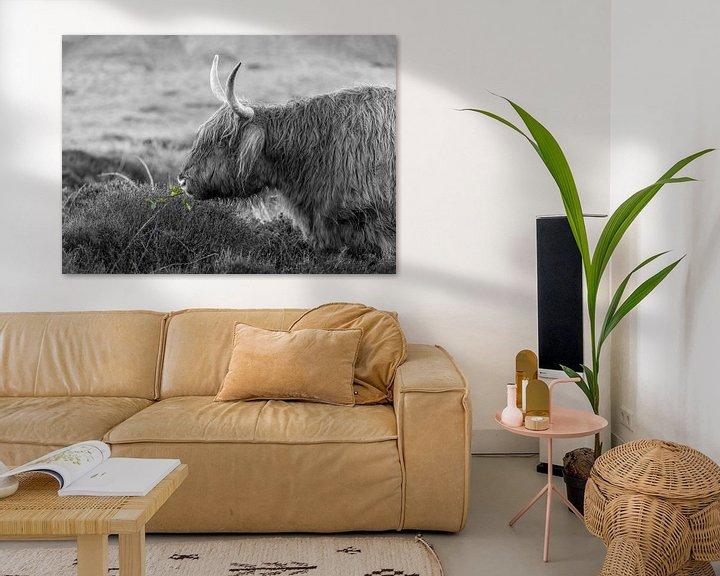 Impression: Texel Highlander noir et blanc avec un peu de couleur sur Texel360Fotografie Richard Heerschap