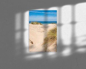 Zandduinen aan de Portugese kust van Susanne Bauernfeind