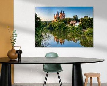 Kathedraal van Limburg an der Lahn, Duitsland van Adelheid Smitt