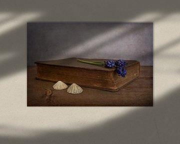 Stilleben mit Buch und blauen Weintrauben