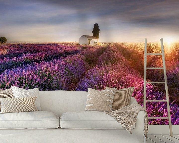 Sfeerimpressie behang: Lavendelveld in de Provence in Frankrijk in het ochtendlicht. van Voss Fine Art Fotografie
