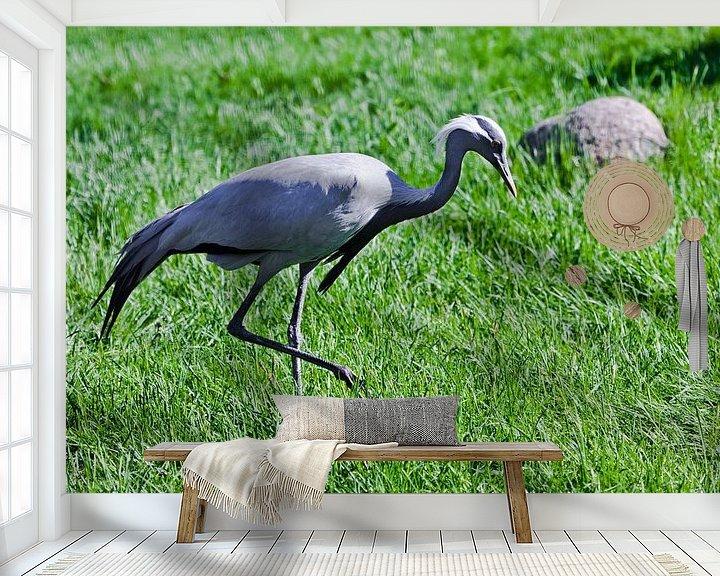 Sfeerimpressie behang: demoiselle kraanvogel op groen gras is sierlijke vogel verzadigde kleuren groen en blauwachtigKraanv van Michael Semenov