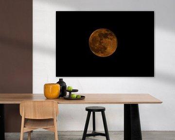 Blood Moon Netherlands van Lynlabiephotography