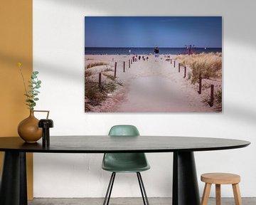 Strandweg an der Ostsee in Warnemünde von Animaflora PicsStock