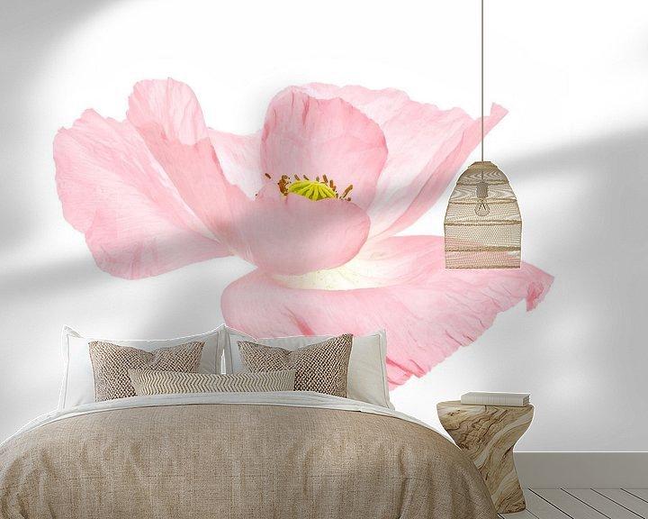 Impression: Rose coquelicot doux sur Tanja van Beuningen