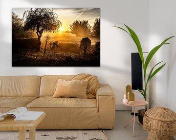 Sonnenaufgang in Wijlre von Rob Boon