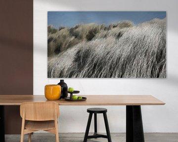 Helm - Dünengras im Wind - Malerei von Schildersatelier van der Ven