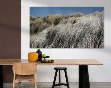 Duingras in de Wind - Gras op de Duinen - Schilderij