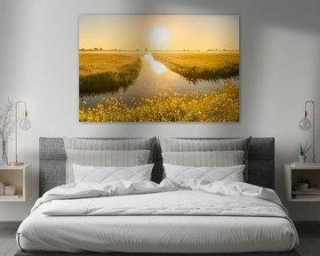 Sonnenaufgang über Wiesen bei Kampen im Frühling von Sjoerd van der Wal