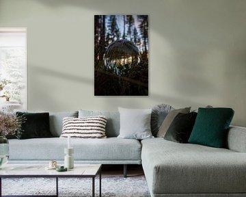 La forêt à travers une boule de verre sur Joyce Schouten